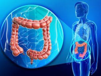 колит кишечника симптомы