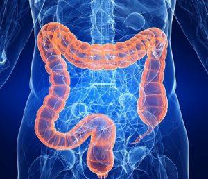 колит кишечника симптомы лечение питание